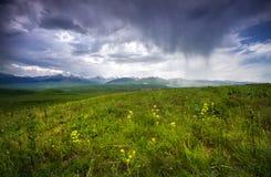 Summer mountains in Kazakhstan Royalty Free Stock Image