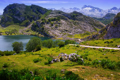 Summer mountains landscape with lake Royalty Free Stock Photography