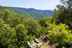 Summer mountains landscape of Montseny. Catalonia Royalty Free Stock Image