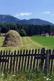 Summer in the mountains. Meadow with haystacks. Mount is seen in the distance. Wooden fence is old royalty free stock images