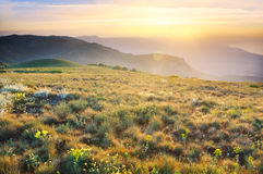Summer mountains Royalty Free Stock Image