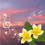 Summer music party template with realistic frangipani, notes and key. Vector illustration. Royalty Free Stock Image