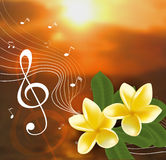 Summer music party template with realistic frangipani,  notes and key. Vector illustration. Stock Images