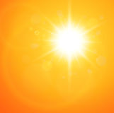 Summer natural  background. With vector sun Stock Images