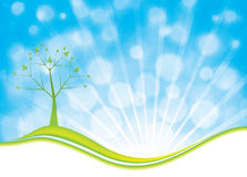 Summer natural background with tree and blue sky Royalty Free Stock Photos