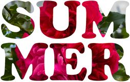 Summer Natural Banner stock image
