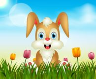 Summer nature background with cute rabbit illustration vector illustration
