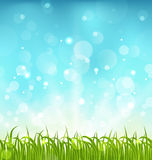 Summer nature background with grass. Illustration summer nature background with grass - vector Royalty Free Stock Image