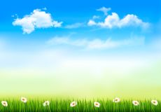 Summer nature background with green grass and sky. Vector vector illustration