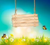 Summer nature background with green grass. And wooden sign. Vector Stock Image