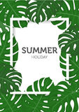 Summer nature concept, palm leaves background Royalty Free Stock Image