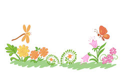 Summer nature - vector flowers and plants Stock Photography