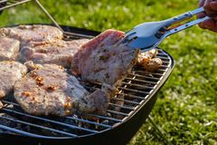 Summer nature grill bbq meat,  barbecued coals. Summer nature grill bbq meat barbecue outdoor,  barbecued coals stock image