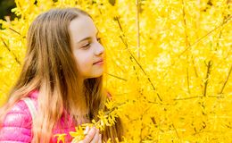Summer nature. happy child with yellow bush bloom. little girl smell blooming flowers. Natural beauty. Childhood. Happiness. Spring holiday. Womens day. Spring stock photography