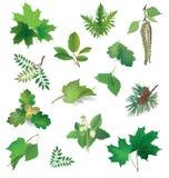 Summer nature icon set. Royalty Free Stock Image