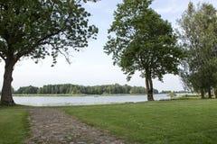 Summer nature landscape Stock Images