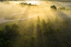 Summer nature in morning sunlight aerial view. Bright sunrise on foggy meadow. Scenery Vibrant sun rays through mist. Drone view stock photography