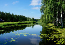 Summer nature, river in calm day Royalty Free Stock Photography