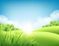 Summer nature sunrise background, a landscape with green hills and meadows, blue sky and clouds. Vector illustration. Summer nature sunrise background, a Stock Photos