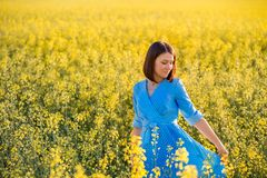 Summer nature. Young woman in blue dress walking on yellow field Royalty Free Stock Images