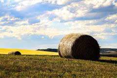 Summer Near Okotoks with hay bale stock photography