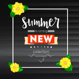 Summer new collection banner. Vintage style text poster with graphic elements, black wooden backdrop and camomile, daisy Royalty Free Stock Photo
