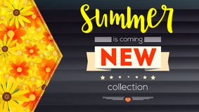 Summer new collection banner. Vintage style text poster with graphic elements, black wooden backdrop and field of. Camomile, daisy, yellow flower. Template Royalty Free Stock Photo