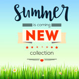 Summer new collection banner. Vintage style text poster with graphic elements, blue summer sky, green, lush grass Royalty Free Stock Images