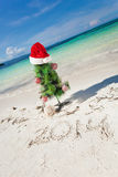 Summer New Year on beach Royalty Free Stock Image