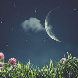 Summer night. Stock Image