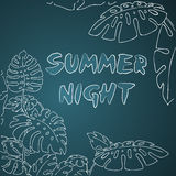 Summer night  jungle palm leaves Stock Images