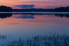 Summer night landscape Stock Photos