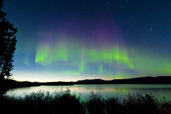 Summer night Northern lights over Lake Laberge royalty free stock photos