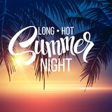 Summer Night. Palm trees  in the night. Vector Royalty Free Stock Images