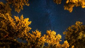 Summer night sky banner background with stars and Milky way. Beautiful summer night sky. Milky way and falling stars. Vertical image concept Royalty Free Stock Images