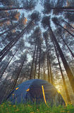 Summer at Norway camping. Tourist tent in the Norway mountains at sunrise Stock Photo