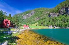 Summer on Norwegian fjord coast Stock Photography
