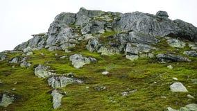 Summer rocky mountain landscape. royalty free stock photo