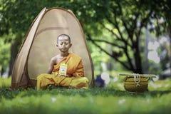 Summer novices are meditating. stock photo