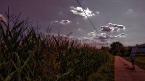 Summer& nublado x27; día de s foto de archivo