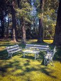 White benches and table stand in the park on the background of large trees royalty free stock photos