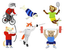 Summer Olympics. A set of animals engaged in various sports summer Olympics Royalty Free Stock Photo