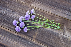 Summer onion blossoms on old wooden plank Royalty Free Stock Images