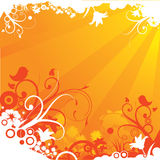 Summer Orange Floral Royalty Free Stock Photos