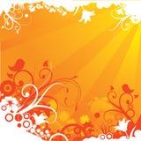 Summer Orange Floral Royalty Free Stock Photos