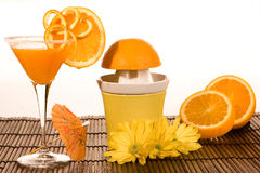 Summer oranges Royalty Free Stock Photo