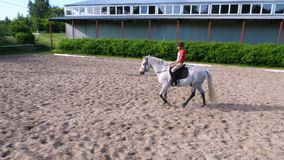 Summer, outdoors, boy rider, jockey riding on thoroughbred beautiful white stallion, horse, on the training sand field. Ground. boy learns to ride a horse in stock video