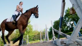 Summer, outdoors, girl rider, jockey riding on a thoroughbred beautiful brown stallion, horse, on the training ground.  stock video footage