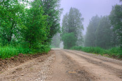 Summer overcast morning, road forest, fog trees Royalty Free Stock Image