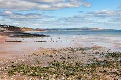 Dawlish Devon England UK. Summer overlooking the beach at Dawlish Devon England UK Europe royalty free stock image